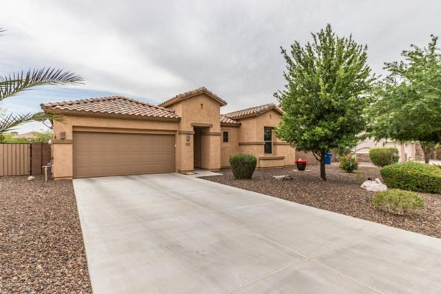 11107 E Rembrandt Avenue, Mesa, AZ 85212 (MLS #5754767) :: Kelly Cook Real Estate Group