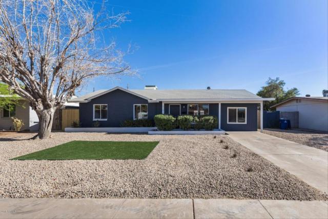 1241 E Valerie Drive, Tempe, AZ 85281 (MLS #5754773) :: The Wehner Group