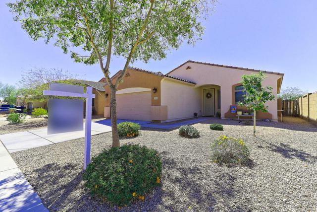 12323 W Patrick Lane, Sun City West, AZ 85375 (MLS #5754789) :: The Worth Group