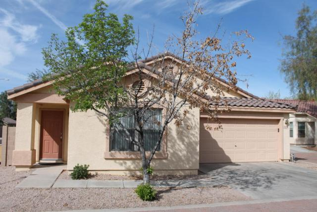 2436 E Peach Tree Drive, Chandler, AZ 85249 (MLS #5754811) :: Kelly Cook Real Estate Group