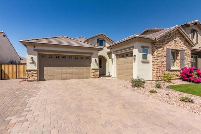 852 E Horseshoe Place, Chandler, AZ 85249 (MLS #5754814) :: Kelly Cook Real Estate Group