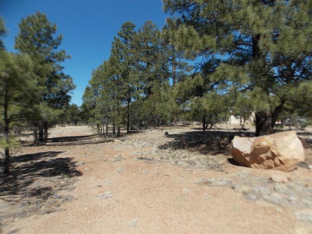 1450 Low Mountain Trail, Heber, AZ 85928 (MLS #5754817) :: The Wehner Group