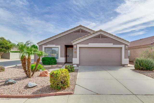 14321 N 129TH Drive, El Mirage, AZ 85335 (MLS #5754818) :: The Sweet Group