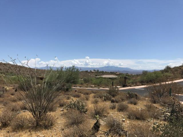 16230 N Desert Fox Parkway, Fountain Hills, AZ 85268 (MLS #5754829) :: The Sweet Group
