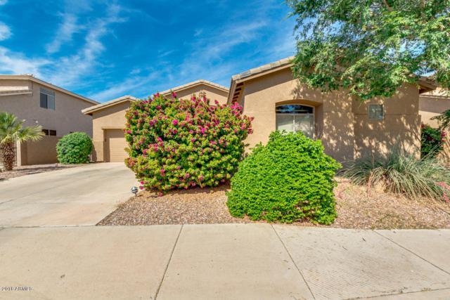 3600 S Nebraska Street, Chandler, AZ 85248 (MLS #5754862) :: Lifestyle Partners Team
