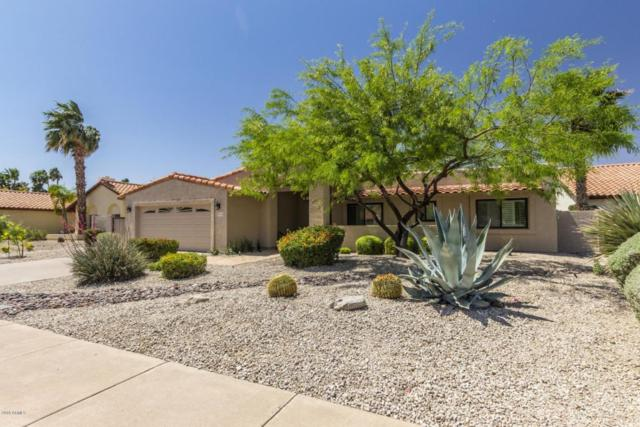 9194 N 103rd Street, Scottsdale, AZ 85258 (MLS #5754864) :: Lifestyle Partners Team