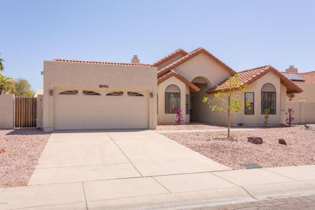 11815 N 110TH Place, Scottsdale, AZ 85259 (MLS #5754884) :: Lifestyle Partners Team