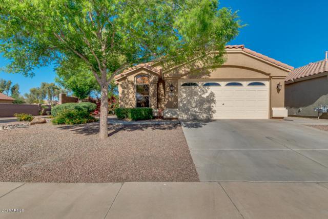 21769 N Kirkland Drive, Maricopa, AZ 85138 (MLS #5754908) :: Yost Realty Group at RE/MAX Casa Grande