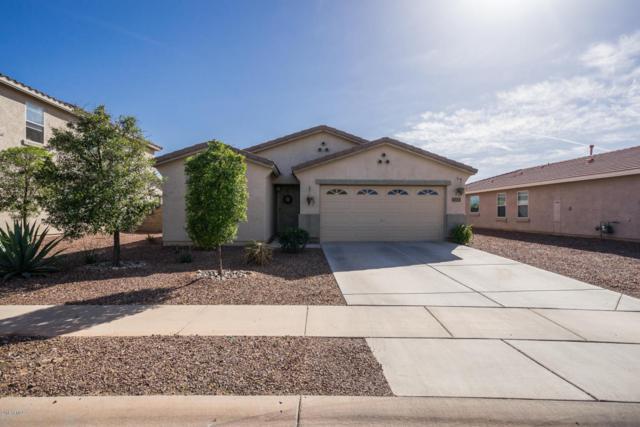 27050 N 178TH Avenue, Surprise, AZ 85387 (MLS #5754915) :: Lifestyle Partners Team