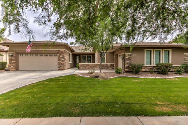 3093 E Marlene Drive, Gilbert, AZ 85296 (MLS #5754930) :: The Wehner Group