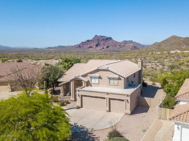 6026 E Viewmont Drive, Mesa, AZ 85215 (MLS #5754931) :: Lifestyle Partners Team