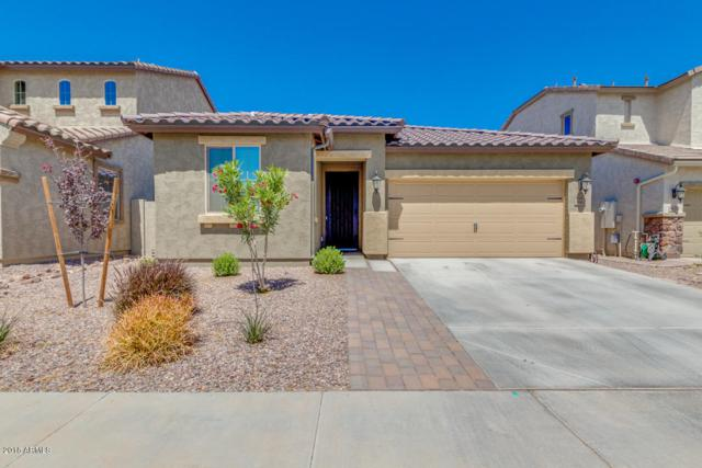 3662 E Rakestraw Lane, Gilbert, AZ 85298 (MLS #5754933) :: The Wehner Group