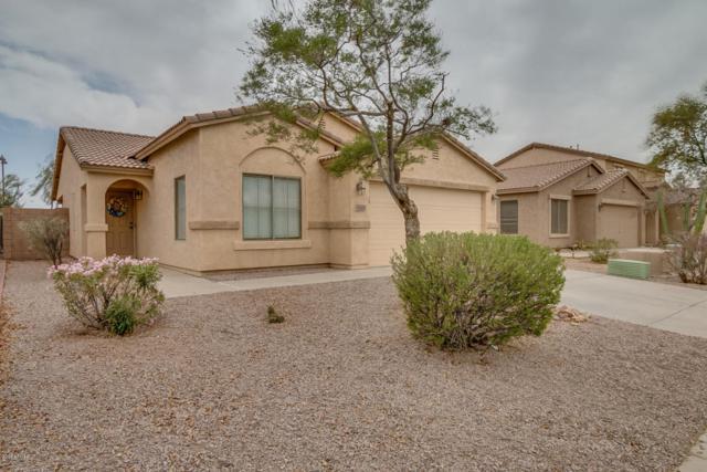 43669 W Sagebrush Trail, Maricopa, AZ 85138 (MLS #5754938) :: Yost Realty Group at RE/MAX Casa Grande
