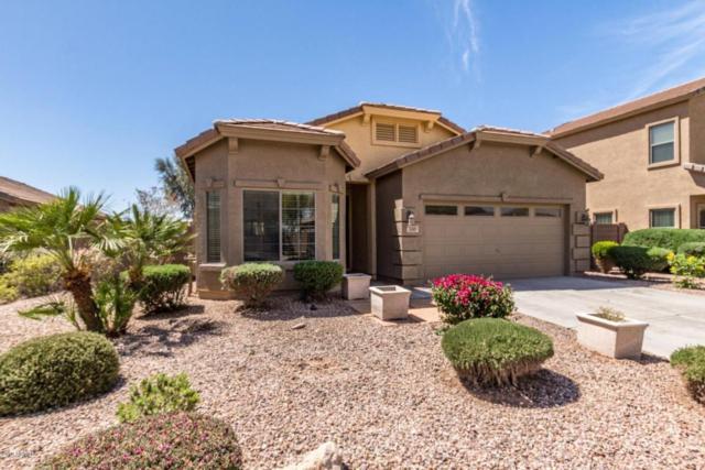 1369 E Linda Drive, Casa Grande, AZ 85122 (MLS #5754939) :: Keller Williams Legacy One Realty