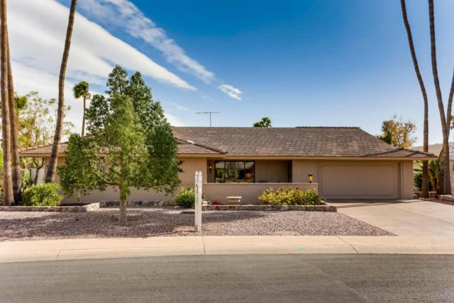 13603 W Pyracantha Drive, Sun City West, AZ 85375 (MLS #5754961) :: The Worth Group