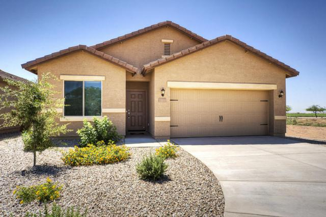 24365 W Gregory Road, Buckeye, AZ 85326 (MLS #5754965) :: Occasio Realty