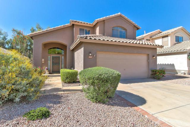 4747 E Lavender Lane S, Phoenix, AZ 85044 (MLS #5754970) :: Lifestyle Partners Team