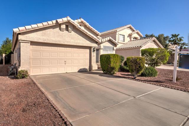 860 N Cholla Street, Chandler, AZ 85224 (MLS #5754995) :: Keller Williams Realty Phoenix