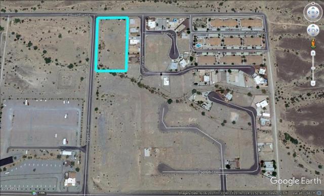 545 N Riggles Avenue, Quartzsite, AZ 85346 (MLS #5754999) :: Yost Realty Group at RE/MAX Casa Grande