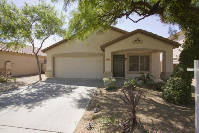 7433 W Melinda Lane, Glendale, AZ 85308 (MLS #5755043) :: Santizo Realty Group
