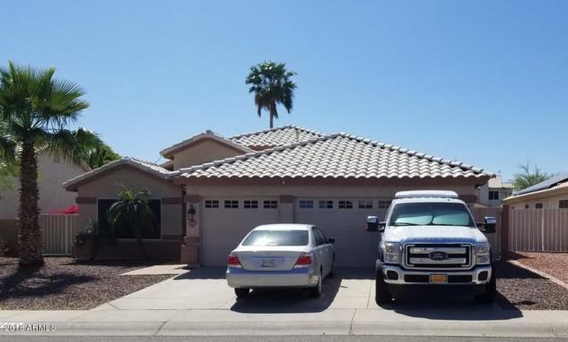 22356 N 66TH Lane, Glendale, AZ 85310 (MLS #5755057) :: Santizo Realty Group