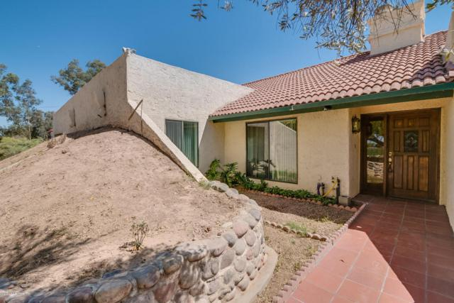 18503 E Via Del Oro Way, Queen Creek, AZ 85142 (MLS #5755096) :: Lux Home Group at  Keller Williams Realty Phoenix