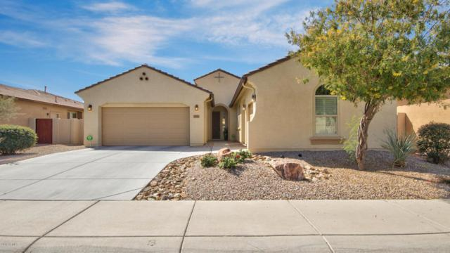 1921 W Pelican Drive, Chandler, AZ 85286 (MLS #5755101) :: Santizo Realty Group