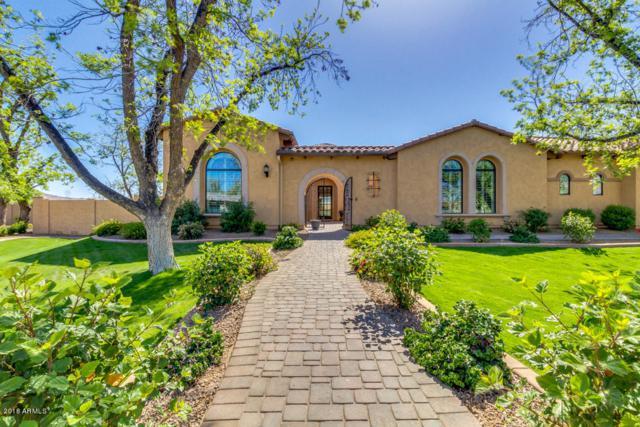 24484 S 203RD Court, Queen Creek, AZ 85142 (MLS #5755108) :: Lux Home Group at  Keller Williams Realty Phoenix