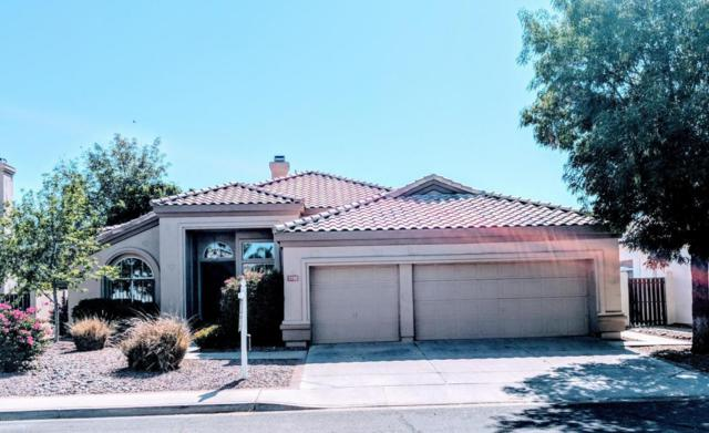 3351 W Drake Street, Chandler, AZ 85226 (MLS #5755119) :: Santizo Realty Group