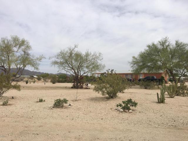 19366 W Osborn Road, Litchfield Park, AZ 85340 (MLS #5755121) :: Brent & Brenda Team