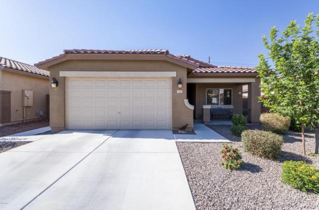 1485 W Crape Road, Queen Creek, AZ 85140 (MLS #5755122) :: Lux Home Group at  Keller Williams Realty Phoenix