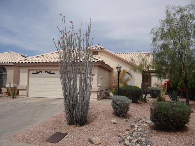 11168 E Laurel Lane, Scottsdale, AZ 85259 (MLS #5755127) :: The Wehner Group