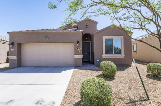 28753 N Roselite Lane, San Tan Valley, AZ 85143 (MLS #5755130) :: Occasio Realty