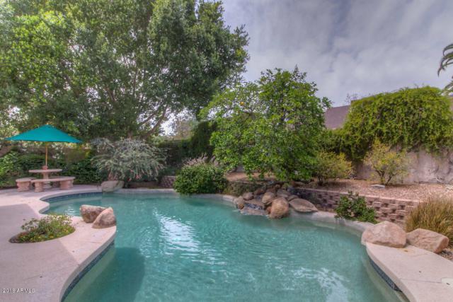 4602 E Sunrise Drive, Phoenix, AZ 85044 (MLS #5755132) :: The Daniel Montez Real Estate Group