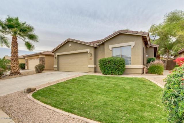 43836 W Elm Drive, Maricopa, AZ 85138 (MLS #5755161) :: CANAM Realty Group