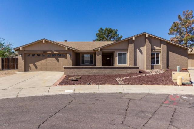 16644 N Landis Lane, Glendale, AZ 85306 (MLS #5755179) :: Santizo Realty Group