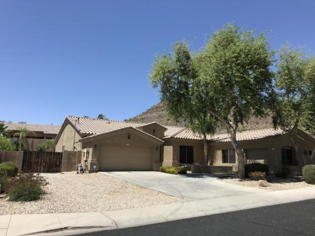 26408 N 42ND Drive, Phoenix, AZ 85083 (MLS #5755191) :: The Wehner Group