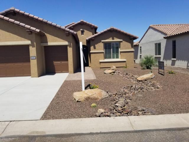 16802 W Coronado Road, Goodyear, AZ 85395 (MLS #5755205) :: Santizo Realty Group