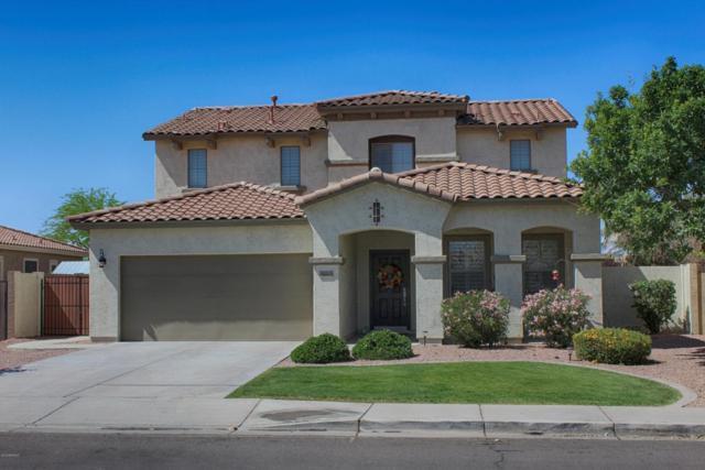 3663 E Jaguar Avenue, Gilbert, AZ 85298 (MLS #5755212) :: Santizo Realty Group