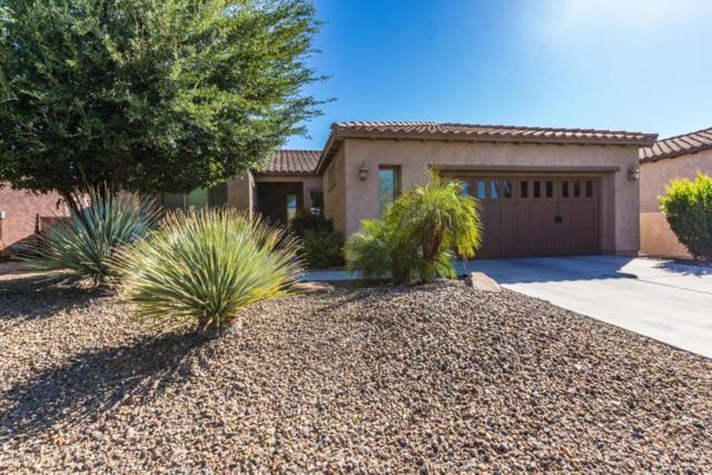 28407 N 123rd Lane, Peoria, AZ 85383 (MLS #5755225) :: The Laughton Team