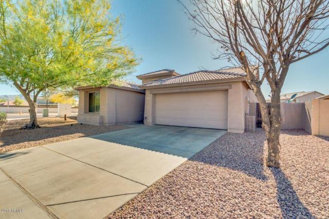 6630 S 23RD Avenue, Phoenix, AZ 85041 (MLS #5755234) :: Yost Realty Group at RE/MAX Casa Grande