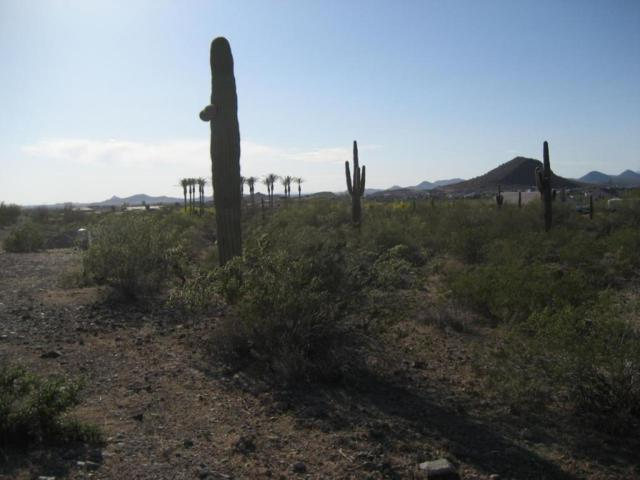 94XX W Remuda Street, Peoria, AZ 85383 (MLS #5755236) :: Santizo Realty Group