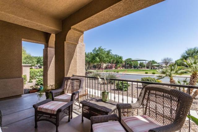 20298 E Via De Colina, Queen Creek, AZ 85142 (MLS #5755248) :: Lux Home Group at  Keller Williams Realty Phoenix