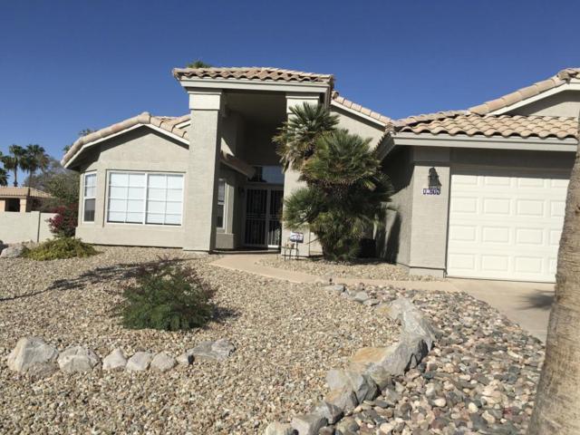 10719 S Morningside Drive, Goodyear, AZ 85338 (MLS #5755252) :: Santizo Realty Group