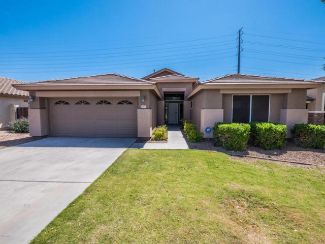 3437 S Joshua Tree Lane, Gilbert, AZ 85297 (MLS #5755273) :: Santizo Realty Group