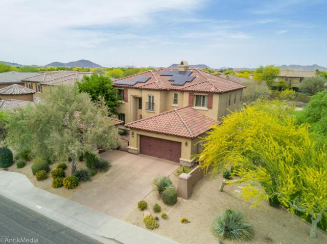 23010 N 39TH Terrace, Phoenix, AZ 85050 (MLS #5755276) :: RE/MAX Excalibur