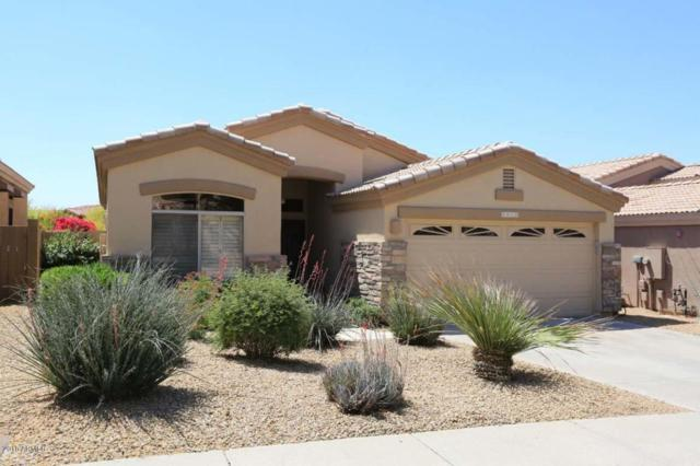8929 E Calle Buena Vista, Scottsdale, AZ 85255 (MLS #5755284) :: Santizo Realty Group