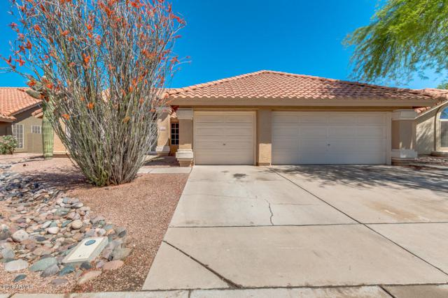 1600 W Jasper Drive, Chandler, AZ 85224 (MLS #5755322) :: Lux Home Group at  Keller Williams Realty Phoenix