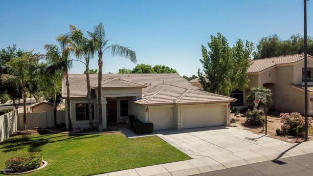 1785 E Sereno Drive, Gilbert, AZ 85296 (MLS #5755337) :: Lux Home Group at  Keller Williams Realty Phoenix