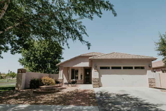 3450 E Bruce Avenue, Gilbert, AZ 85234 (MLS #5755348) :: Realty Executives